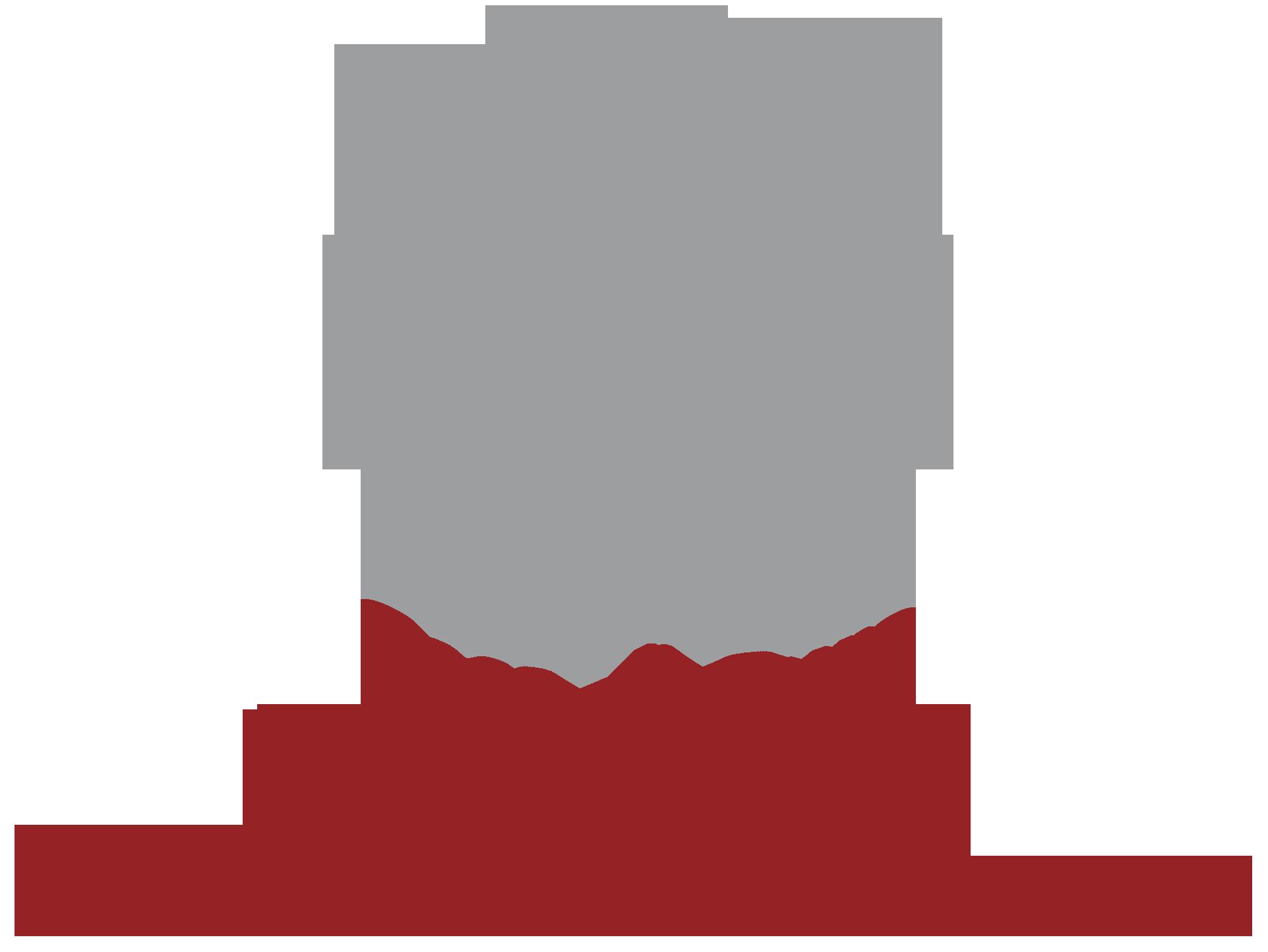 logo_villapini_png